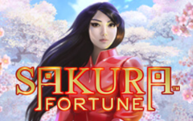 sacura-fortune