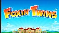 Игровой автомат Foxin Twins